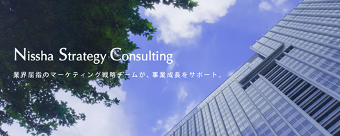 Nissha Strategy Consulting のサービスを開始